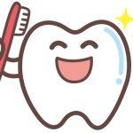 歯がとれた